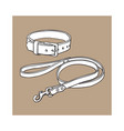 simple brown leather pet cat dog buckle collar vector image