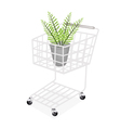 Beautiful Green Fern in A Shopping Cart vector image