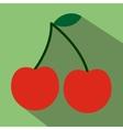 Cherry flat icon vector image