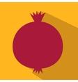 Pomegranate flat icon vector image