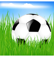 Classic Soccer Ball In Grass vector image vector image
