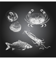 Seafood chalkboard drawing sketch set vector image