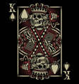 Skull Playing Card vector image