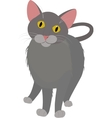 grey cartoon domestic cat with yellow eyes vector image