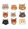 Set of Cat s Faces Flat Design vector image