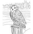 snowy owl in the zentangle style vector image