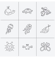 Octopus turtle and dolphin icons Jellyfish vector image
