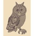 original artwork of owl ink hand drawing in vector image vector image