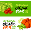 Eco food menu banners Hand drawn sketch vegetables vector image