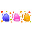 school bags set autumn leaves decor vector image