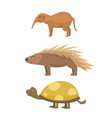 african animals turtle cartoon vector image