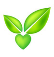 green icon with heart shape and two leaves vector image