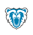 Bear Logo for sport club or team Animal mascot vector image