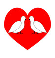 love couple dove in red heart vector image