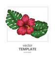 tropical background with tropical leaves and vector image