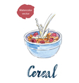 cereal vector image