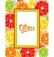 Frame with citrus fruits slices Mix of lemon lime vector image