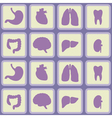 Seamless background with organs of the human body vector image