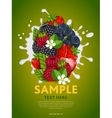 Berry mix on milk splash vector image