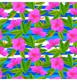Tropical pattern with pink hibiscus flowers vector image