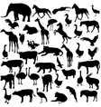 Set silhouettes animals and birds in the zoo vector image