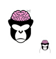 Monkey with brains Carnival mask for any holiday vector image