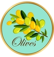 Olive branch badge vector image