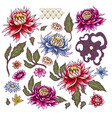 set of painted flowers asters japanese style vector image