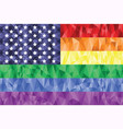 American Flag on the Rainbow Background vector image