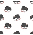 Domestic Rats Seamless Pattern vector image