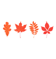 Set of autumn leaves isolated on white Oak rowan vector image