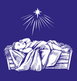 christmas story christmas night baby jesus in vector image