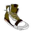A shoe is placed vector image