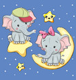 lovers elephants on a moon and star vector image
