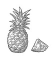 whole and slice pineapple black vintage vector image