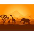 safari vector image