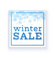 winter sale poster template vector image
