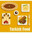Turkish cuisine with kebab and shawarma vector image