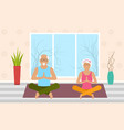 adult woman and man meditating in pose lotus home vector image