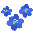 group of colored flowers vector image