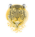 tiger head isolated on yellow watercolor paint vector image