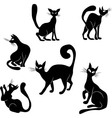 Black cat icon silhouette collection vector image