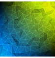 Abstract mesh technology background vector image vector image