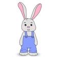 Rabbit boy in overalls vector image