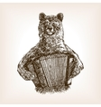 Bear with accordion sketch vector image