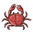 crab vector image
