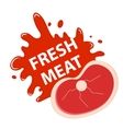 Fresh meat with a splash icon flat style vector image