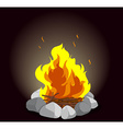 Campfire on black background vector image