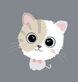 cute cat design on gray background vector image