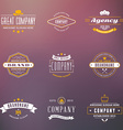 Set of Hipster Vintage Labels Logotypes Badges vector image